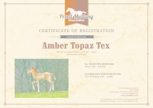 thumbnail of Amber_Topaz_Tex_C1