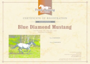 thumbnail of Blue_Diamond_Mustang_C1