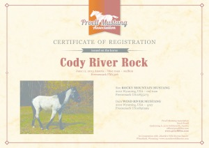 thumbnail of Cody_River_Rock_C1