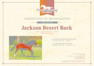 thumbnail of Jackson_Desert_Rock_C1