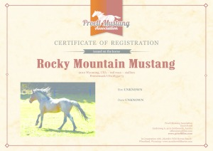 thumbnail of Rocky_Mountain_Mustang_C1