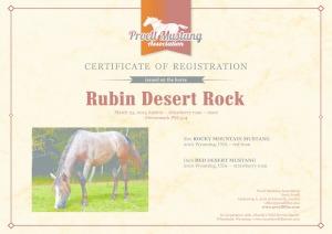 thumbnail of Rubin_Desert_Rock_C1